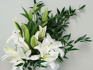 White Lilies & Greens